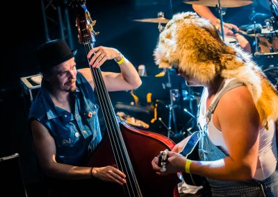 concert-stevenseagulls-la-souris-verte-epinal-photo06